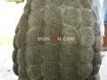 Patung Samsi (Singa) Batu Alam / Candi Tampak Belakang Rambut