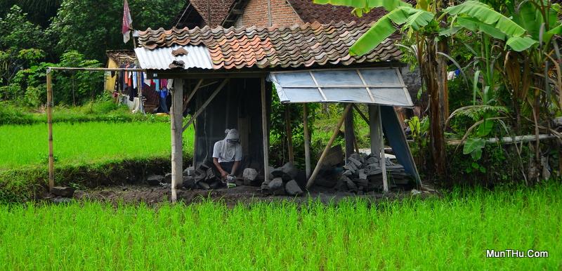 Seorang Pengrajin Sedang Memahat Batu Membuat Munthu Di Pinggir Sawah Dusun Sewan
